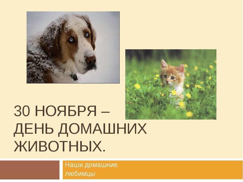 конечно, записан открытки день домашних животных давно внимание