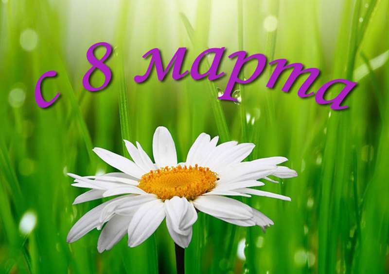 Сегодня 8 марта! Скачать открытки, картинки, поздравления смс
