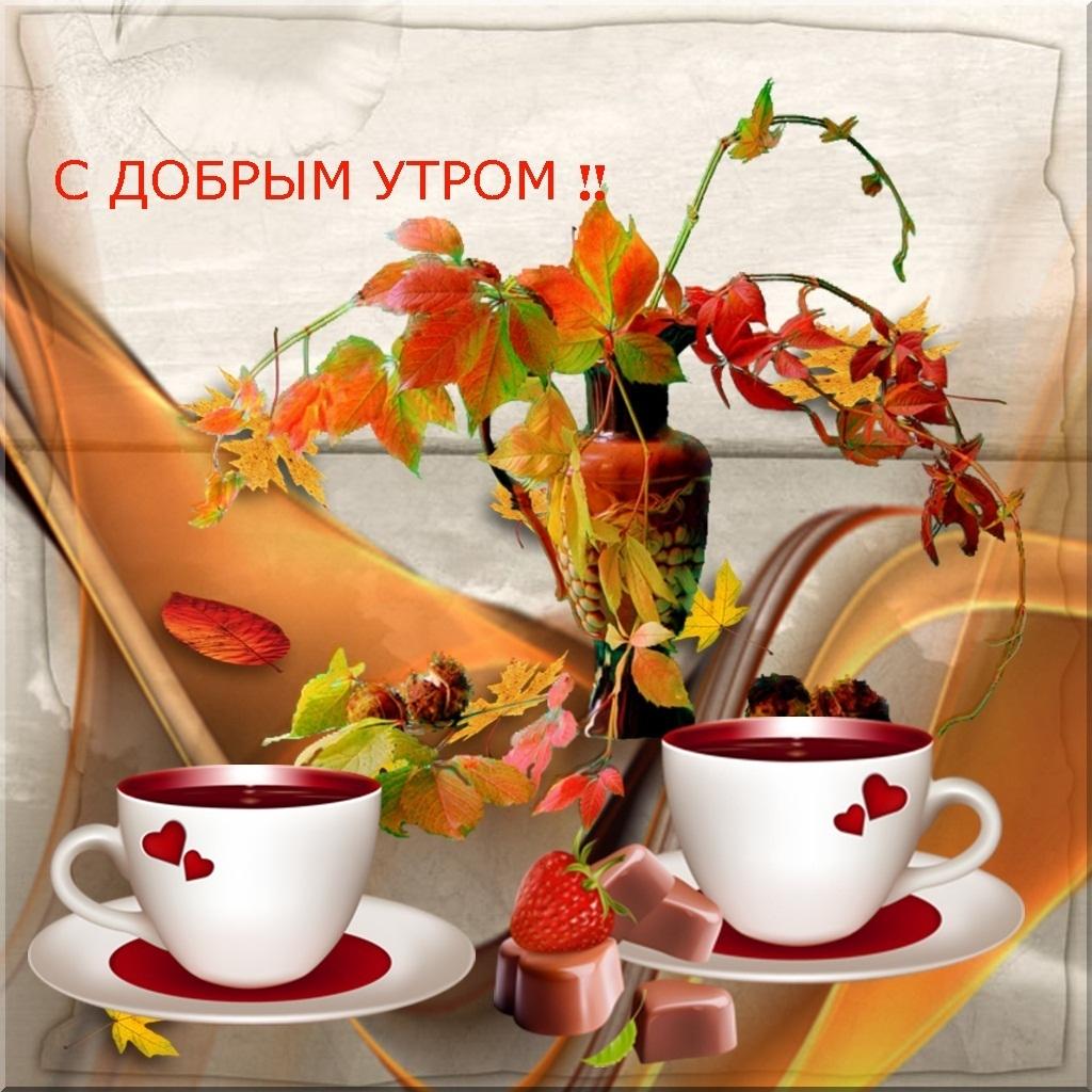 Смешные картинки, открытки с миром и добром и прекрасным утром
